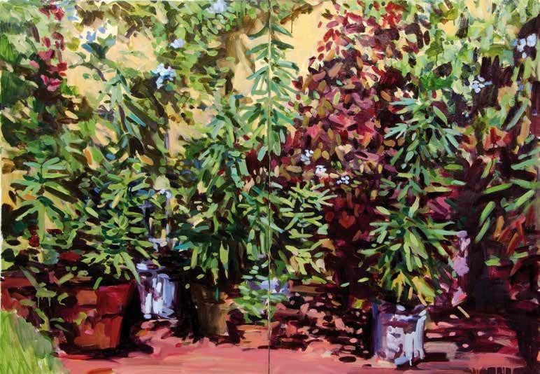 Plantas flores y frutos de mi patio arsomnibus - Plantas para patio ...