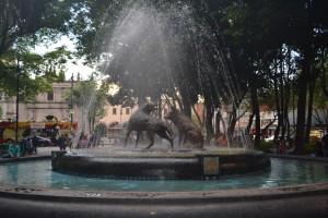 En el Zócalo de Coyoacán, la fuente de los coyotes - Foto Carmen Silveira
